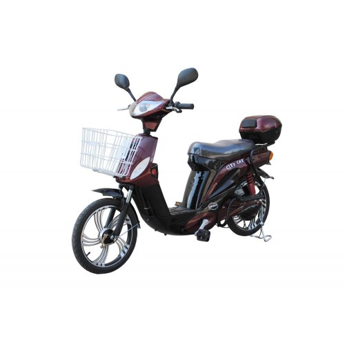CITY-CAT-2-new-(Red)-500x500 (1)