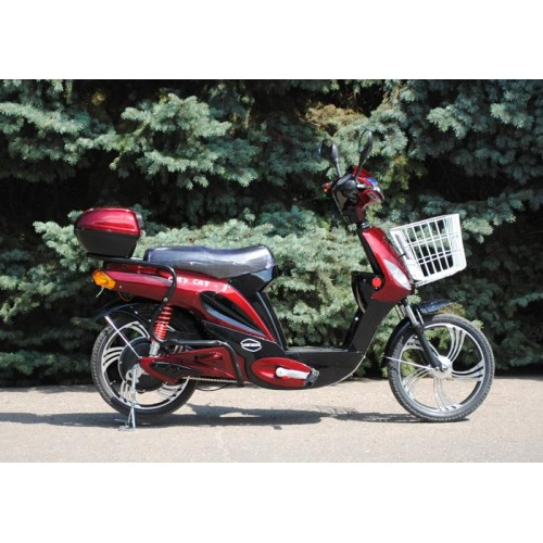 CITY-CAT-2-new-(Red)-6-500x500