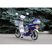 VEGA CITY CAT 2 new (Blue)-4-500x500